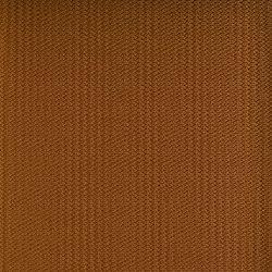 hitch-tangerine-8991.jpg