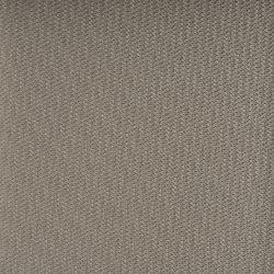 hitch-seashell-8964.jpg